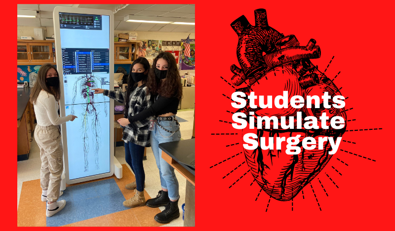students simulate surgery graphic - girls standing in front of circulatory map and heart